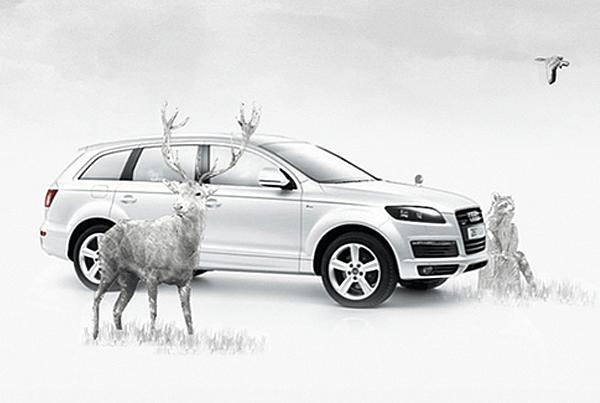 Audi Materia Sensible